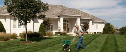 Easy And Effective Winter Care Lawn Tips