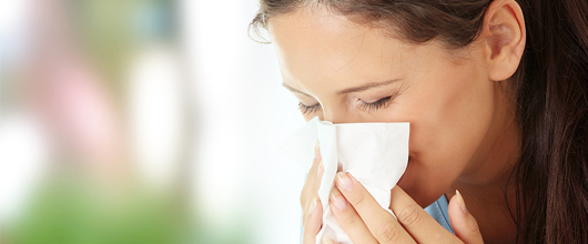 Suffering from summer allergies? Three simple steps to reduce indoor symptoms